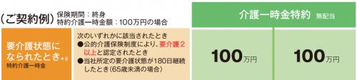 www.sonylife.co.jp_examine_lineup_list_pdf_PB141.pdf-12