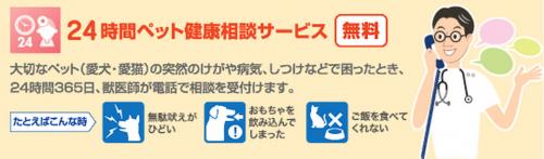 24時間ペット健康相談サービス|アクサダイレクトのペット保険