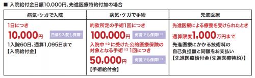 rakutenlife_net_panph_201407.pdf